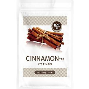 送料無料 メール便 シナモン サプリメント シナモンの錠剤 120粒 健康食品|sakuazul