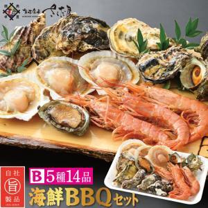 海鮮 BBQセット バーベキューセット B 5種14品 3〜4人前【冷凍便】