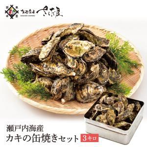 カキ 缶焼き 3kg 約35〜55個(殻付き牡蠣 かき)缶・軍手・ナイフ付き