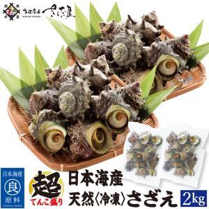 海鮮 BBQセット 日本海産 冷凍さざえ 徳用2kg【冷凍便】