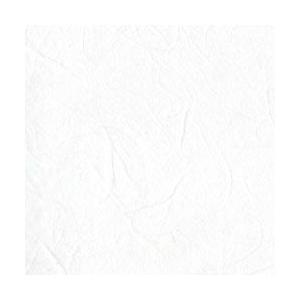手漉き 雲竜紙 白色|sakura-cer