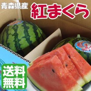 スイカ 果物 青森県産 紅まくら 大 2玉入り