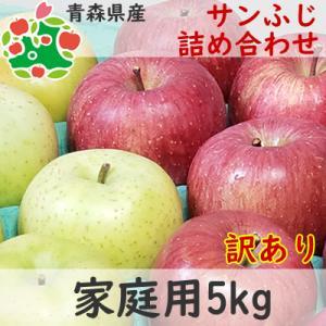 りんご 訳あり 青森県産 サンふじ 家庭用 キズあり 5kg...