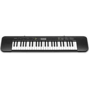CASIO(カシオ) キーボード CTK-240 [ピアノ 楽器] sakuragakki