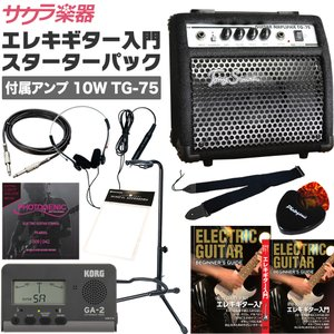 エレキギター用 入門セット TG-75スターターパック (本...
