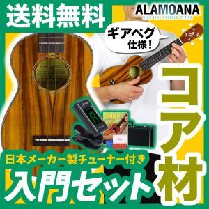 ウクレレ 初心者 入門 セット AlaMoana UK-2800G (送料・代引手数料無料)|sakuragakki