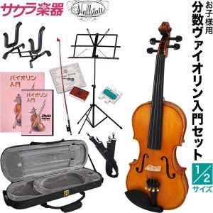 バイオリン V-28-1/2 初心者 入門 セット sakuragakki