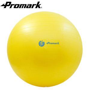 【PROMARK・プロマーク】 バランスボール55cm レベ...