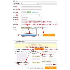 携帯決済専用 差額決済専用 オプションを別途ご購入のお客様用|sakuranokoi|03