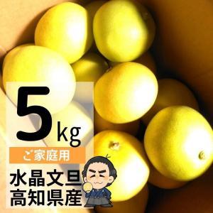 水晶文旦 5kg入 ご家庭用 ハウスブンタン 高知産 早生ぶんたん 沖縄県と離島は、別途1000円配送料がかかります。