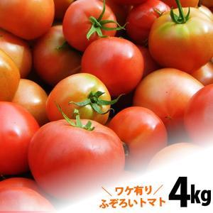 ワケ有り  トマトたっぷり約4kg  トマト 土佐の高知の新...