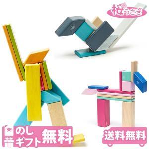 積み木 つみき テグ マグネット ブロック 木製 天然木 知育玩具 14ピース tegu DADWAY 送料無料 sakurausagi