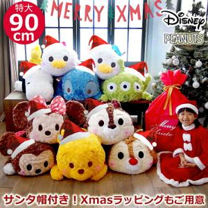 【クリスマスセット(サンタ帽+ラッピング袋付き)】【disney_y】【ポケット付きハート型メッセー...