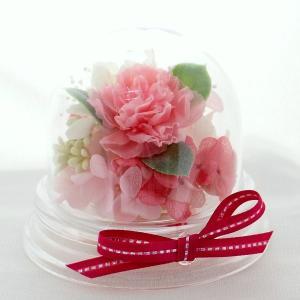 アジサイのミニインテリア ドームアレンジカーネーション 母の日  結婚記念日  卒業祝い
