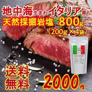 岩塩 塩 ポイント消化 送料無料 食品 お試し 食用 イタリア シチリア 800g 200g×4袋 ...