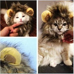 猫コスプレ 猫かぶりもの 写真撮影用コスプレ ライオン|sam-store
