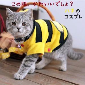 猫服 猫用コスプレ 蜂の猫服 キャットウェア 猫用の服|sam-store
