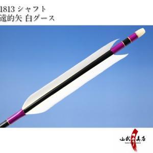 遠的矢 白グース 1813シャフト 6本組 弓道 弓具 矢 D-1155 sambu