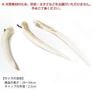 鹿角製粉入れ 弓道 弓具 弓道用品 J-144 sambu