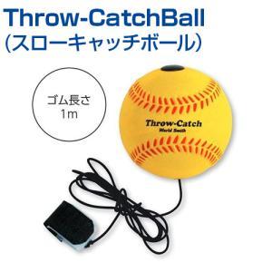 自主練習 上達のコツ グッズ ピッチング練習 投球 ボール 楽しく練習 メール便不可
