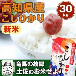 【送料無料】 29年産 高知コシヒカリ 30kg(10kg×...