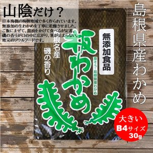 30年度新芽 島根県産のでっかい板わかめ B4サイズ 30gの商品画像|ナビ