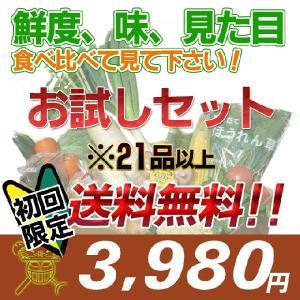 初回限定品/安心・安全な四国産の新鮮お野菜セット21品+オマケ付き