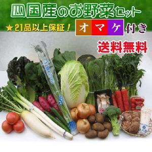 安心・安全な四国産の新鮮お野菜セット21品+オマケ付き
