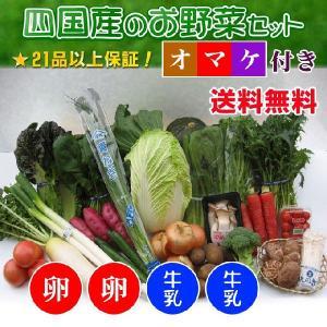安心・安全な四国産の新鮮お野菜セット21品+卵20個+牛乳2本セット+オマケ付き