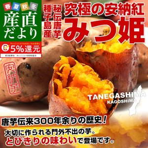 鹿児島県より産地直送 種子島安納紅「みつ姫」 約1.8キロ 送料無料 さつまいも 唐芋 からいも カライモ|sanchokudayori