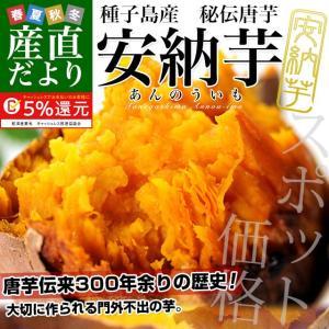 鹿児島県より産地直送 種子島産「安納芋」約5キロ 送料無料 さつまいも 唐芋 からいも カライモ|sanchokudayori