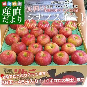 長野県より産地直送 JAながの 飯綱地区 シナノスイート 秀品 10キロ (36玉から46玉) 送料無料 林檎 りんご リンゴ|sanchokudayori