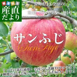 長野県より産地直送 JAながの 飯綱地区 サンふじ 赤秀以上 5キロ (16玉から18玉) 送料無料 林檎 りんご リンゴ|sanchokudayori
