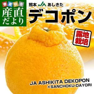 送料無料 熊本県から産地直送 JAあしきた 露地栽培デコポン...