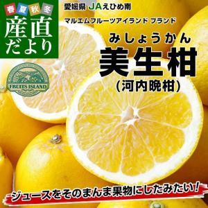 送料無料 愛媛県 JAえひめ南 美生柑(河内晩柑)7キロ Lサイズ 22玉 優品  ジューシーオレンジ グレープフルーツ