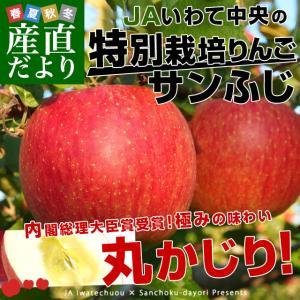 岩手県より産地直送 JAいわて中央 特別栽培りんご「サンふじ」 5キロ (14玉から20玉) 送料無料 林檎 りんご リンゴさんふじ|sanchokudayori