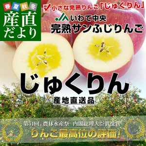 岩手県より産地直送 JAいわて中央 完熟サンふじりんご じゅくりん 5キロ(16玉から23玉) 林檎 リンゴ 送料無料|sanchokudayori