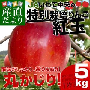岩手県より産地直送 JAいわて中央 特別栽培りんご 紅玉 5キロ(20玉から25玉) こうぎょく 林檎 リンゴ 送料無料|sanchokudayori