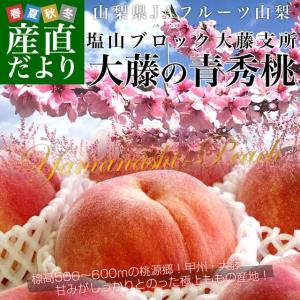 山梨県より産地直送 JAフルーツ山梨 大藤支所 大藤の桃 約5キロ (15から18玉) 桃 Peach もも|sanchokudayori