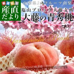 山梨県より産地直送 JAフルーツ山梨 大藤支所 大藤の桃 約5キロ (13から16玉) 桃 Peach もも|sanchokudayori