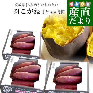 茨城県より産地直送 JAなめがたしおさい さつまいも「熟成紅こがね」 SからSSサイズ 約1キロ(5本から10本)3箱セット 送料無料 行方 薩摩芋|sanchokudayori