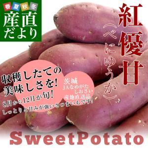 茨城県より産地直送 JAなめがたしおさい さつまいも「紅優甘 (べにゆうか)」 Mサイズ 5キロ(18本前後) 送料無料 さつま芋 サツマイモ 薩摩芋|sanchokudayori