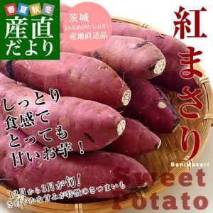 茨城県より産地直送 JAなめがた さつまいも「紅まさり(べにまさり)」 Mサイズ 約5キロ(18本前後) 送料無料 さつま芋 サツマイモ 薩摩芋|sanchokudayori