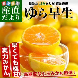 和歌山県より産地直送 JAありだ ゆら早生みかん 5キロ SからSSサイズ 蜜柑 ミカン 送料無料|sanchokudayori