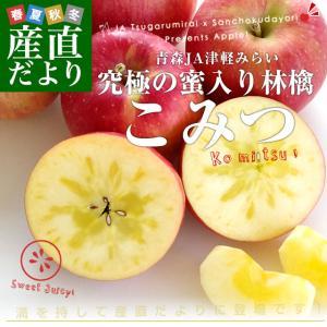 青森県より産地直送 JA津軽みらい 蜜入りりんご「こみつ」 秀品 2キロ (8玉から11玉) 送料無料 林檎 りんご|sanchokudayori
