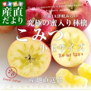 青森県より産地直送 JA津軽みらい 蜜入りりんご「こみつ」 小玉 2キロ (12玉から13玉) 送料無料 林檎 りんご|sanchokudayori
