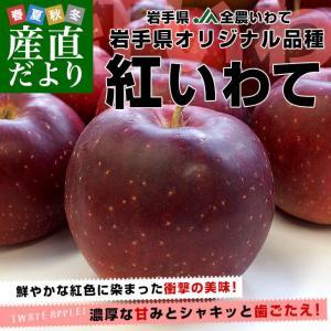 岩手県より産地直送 JA全農いわて 岩手県オリジナル品種 紅いわて 秀品 約5キロ (14から20玉) 送料無料 林檎 リンゴ|sanchokudayori