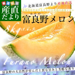 北海道より産地直送 富良野メロン 赤肉 約8キロ (大玉5玉から6玉) (1玉1.3キロから1.6キロ) ふらのめろん レッド 送料無料|sanchokudayori