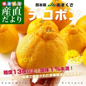 熊本県から産地直送 JAあまくさ デコポン 2L 5キロ (20玉) でこぽん しらぬひ 不知火 天草 送料無料|sanchokudayori