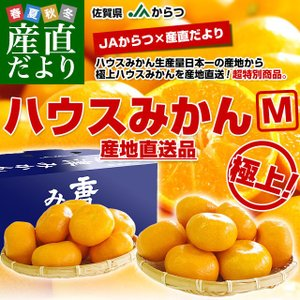 佐賀県より産地直送 JAからつ ハウスみかん Mサイズ 約2キロ(20玉前後)